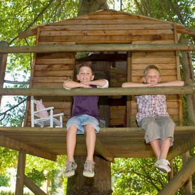 Baumhaus Selber Bauen der traum vom eigenen baumhaus tipps die sie beim bauen beachten